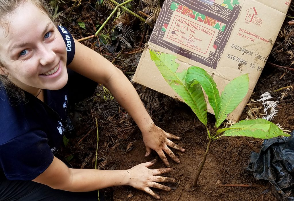 A researcher helps plant trees on Community Tree Planting Day.