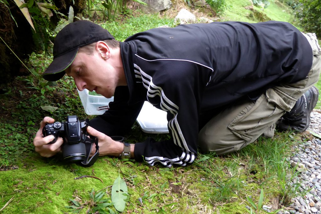 One of our former resident biologists documenting amphibian species to update the Cloudbridge species lists.