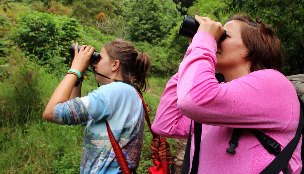 Bird watching tours are just one of the specialty tours offered at Cloudbridge.
