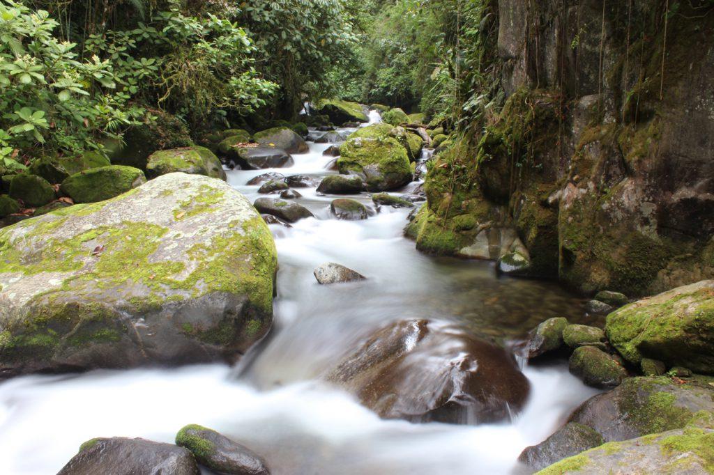 Waterfall_Trail
